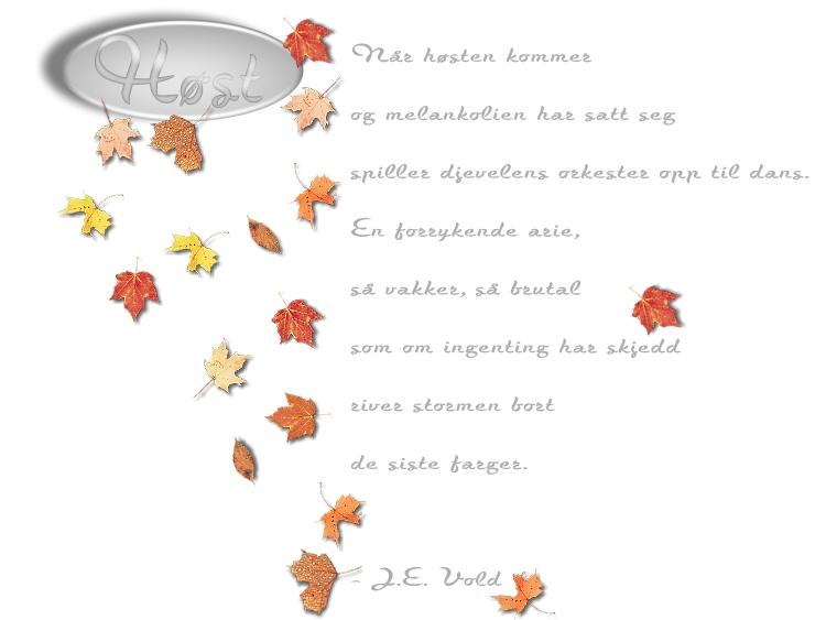 50 år dikt humor